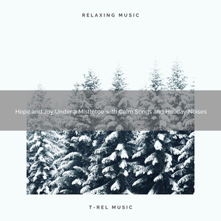 Hope And Joy Under A Mistletoe With Calm Songs And Holiday Noises