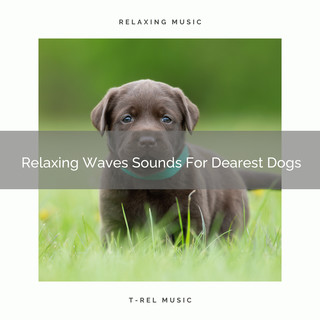 Relaxing Waves Sounds For Dearest Dogs