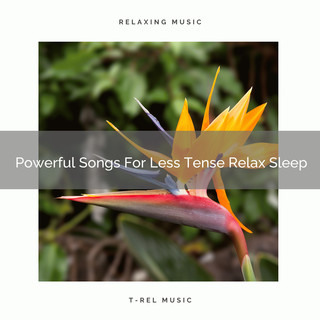 Powerful Songs For Less Tense Relax Sleep