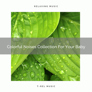 Colorful Noises Collection For Your Baby
