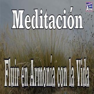 Meditación. Fluir En Armonía Con La Vida.