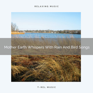Mother Earth Whispers With Rain And Bird Songs