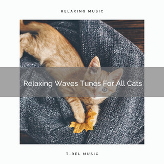 Relaxing Waves Tunes For All Cats