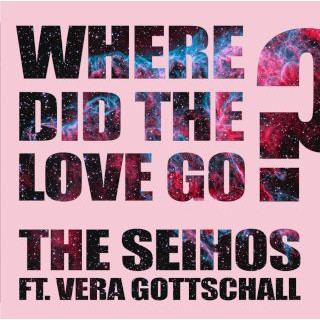 Where Did The Love Go ? (feat. Vera Gottschall)