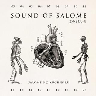 サウンド・オブ・サロメ 水のさとし編 (Sound of Salome Mizuno Satoshi Hen)