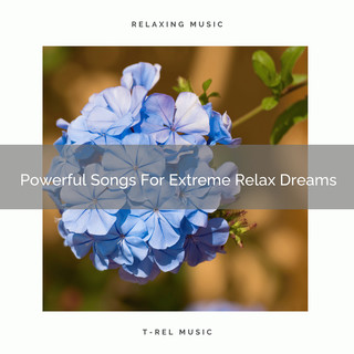 Powerful Songs For Extreme Relax Dreams