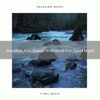 Meadow And Beach With Birds For Good Night