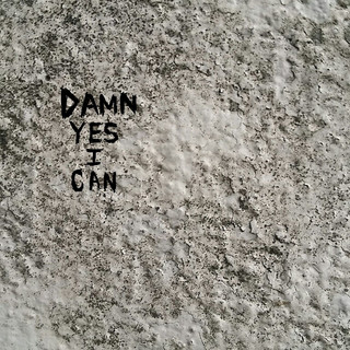 Damn Yes I Can
