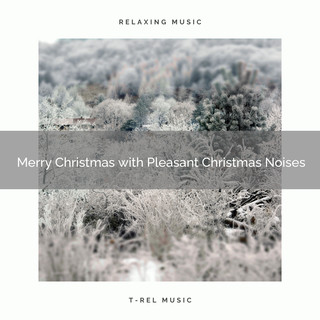 Merry Christmas With Pleasant Christmas Noises