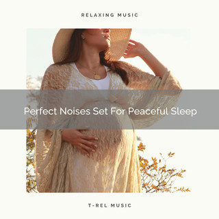 Perfect Noises Set For Peaceful Sleep