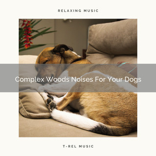 Complex Woods Noises For Your Dogs