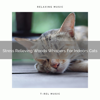 Stress Relieving Woods Whispers For Indoors Cats