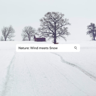 Nature:Wind Meets Snow