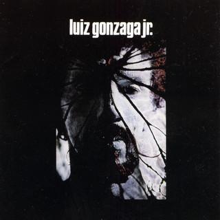 Luiz Gonzaga Jr.