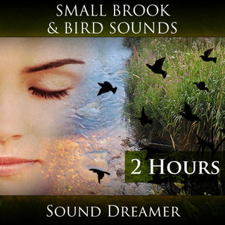 Small Brook And Bird Sounds (2 Hours)
