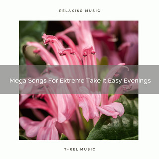 Mega Songs For Extreme Take It Easy Evenings