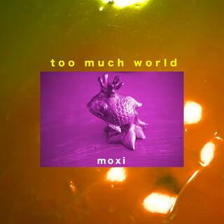 Too Much World