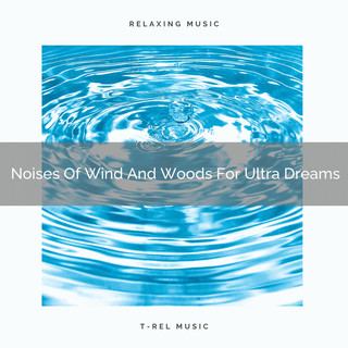 Noises Of Wind And Woods For Ultra Dreams