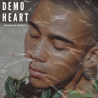 Demo Heart
