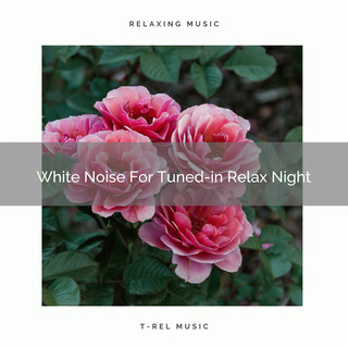 White Noise For Tuned - In Relax Night