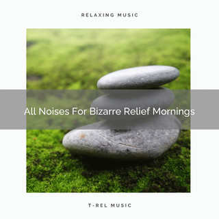 All Noises For Bizarre Relief Mornings