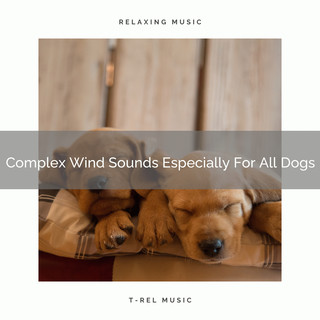 Complex Wind Sounds Especially For All Dogs