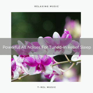 Powerful All Noises For Tuned - In Relief Sleep