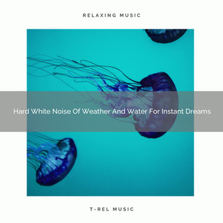 Hard White Noise Of Weather And Water For Instant Dreams
