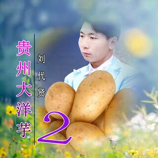 貴州大洋芋2