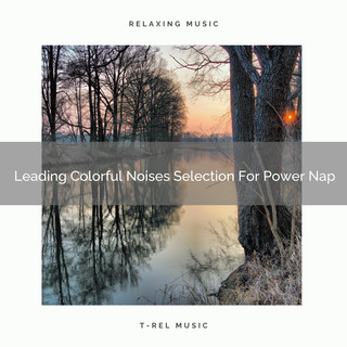 Leading Colorful Noises Selection For Power Nap