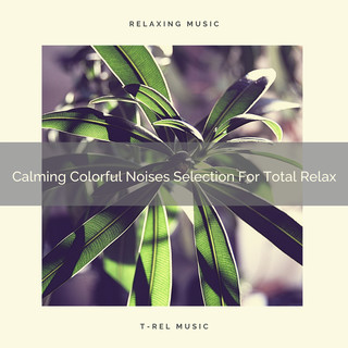 Calming Colorful Noises Selection For Total Relax