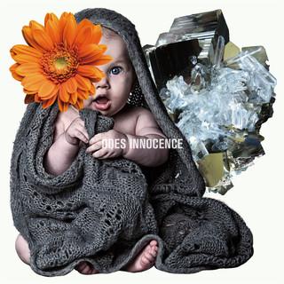 INNOCENCE (イノセンス)