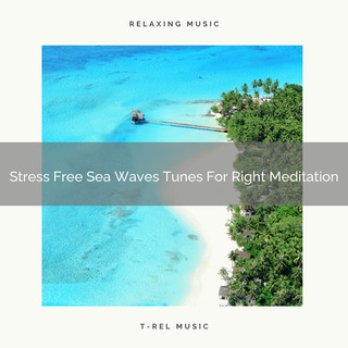 Stress Free Sea Waves Tunes For Right Meditation
