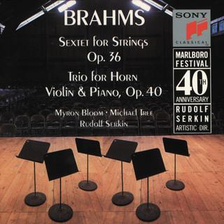 Brahms:Sextet, Op. 36; Horn Trio, Op. 40