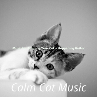 Music For Training Your Cat - Happening Guitar