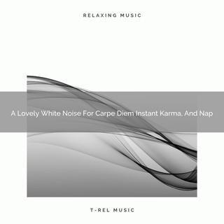 A Lovely White Noise For Carpe Diem Instant Karma, And Nap