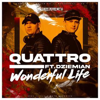 Wonderful Life (Feat. Dziemian)