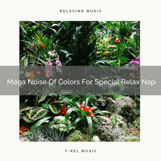 Mega Noise Of Colors For Special Relax Nap