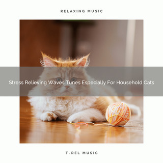 Stress Relieving Waves Tunes Especially For Household Cats