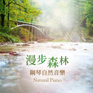 漫步森林 / 鋼琴自然音樂