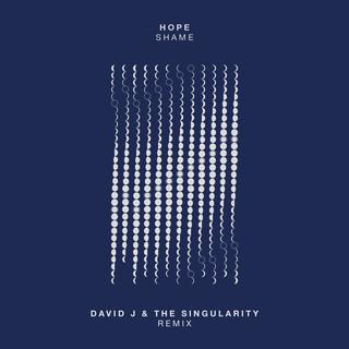 Shame (David J & The Singularity Remix)