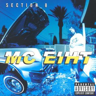 Section 8 (Explicit)