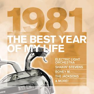 The Best Year Of My Life:1981