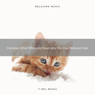 Complex Wind Whispers Especially For Your Beloved Cats