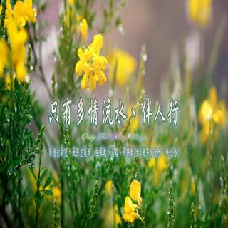 東方冥想音樂系列 (16) 只有多情流水、伴人行.Only The River Sings