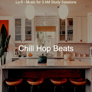 Lo - Fi - Music For 3 AM Study Sessions