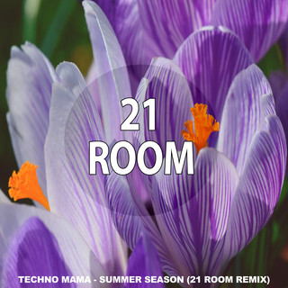 Summer Season (Remixes)
