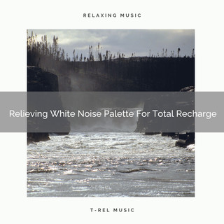 Relieving White Noise Palette For Total Recharge