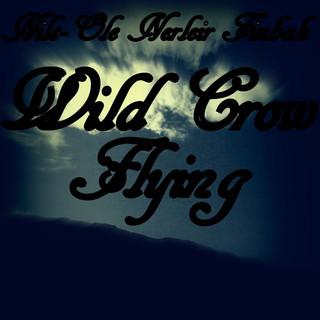 Wild Crow Flying