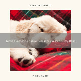 Tension Loosening Nature Tunes For Stressed, Lively Dogs